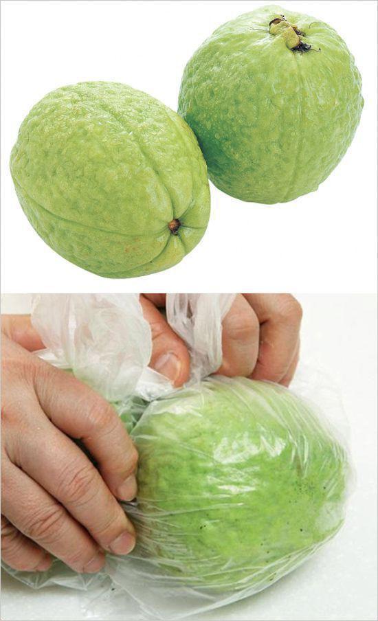 Cho ổi vào trong túi nilon để bảo quản
