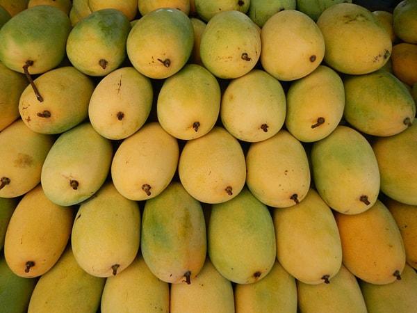 Xoài cát Hòa Lộc là loại quả đặc sản nổi tiếng của vùng đồng bằng sông Cửu Long