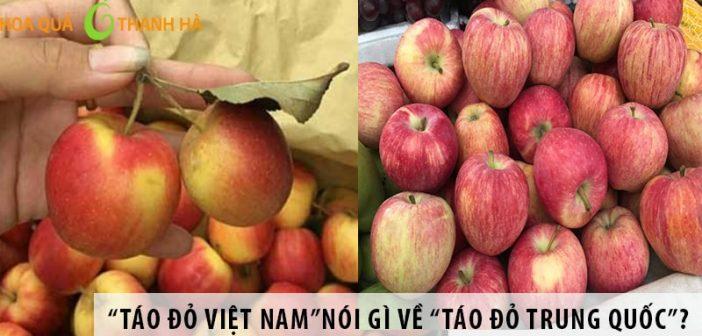 """""""Táo đỏ Việt Nam""""nói gì về """"Táo đỏ Trung Quốc""""?"""