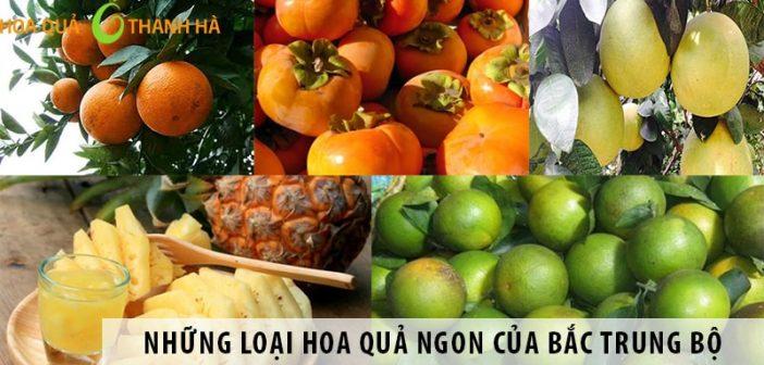 Những loại hoa quả ngon của Bắc Trung Bộ