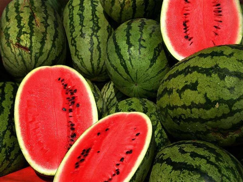 Trái dưa hấu mỏng vỏ, thơm và ngọt