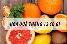 Hoa quả tháng 12 có quả gì thơm ngon, bổ dưỡng?