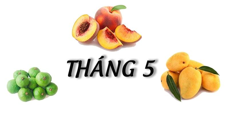 Tháng 5 mùa trái cây gì? - Tác dụng của từng loại quả 3