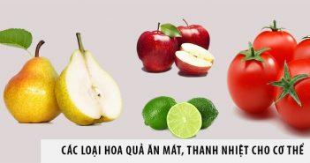 Các loại hoa quả ăn mát, thanh nhiệt cho cơ thể