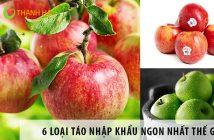 6 loại táo nhập khẩu ngon nhất thế giới