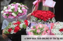 6 shop hoa tươi online uy tín tại Hải Dương