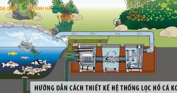 Hướng dẫn cách thiết kế hệ thống lọc hồ cá Koi