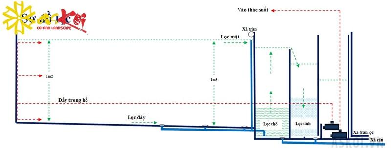 Nguyên tắc hoạt động của hệ thống lọc hồ cá Koi