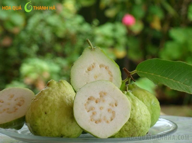 Ổi là trái cây phổ biến và có nhiều tác dụng đối với sức khỏe