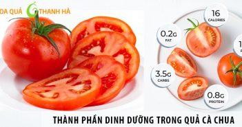 Thành phần dinh dưỡng trong quả cà chua và lợi ích với con người