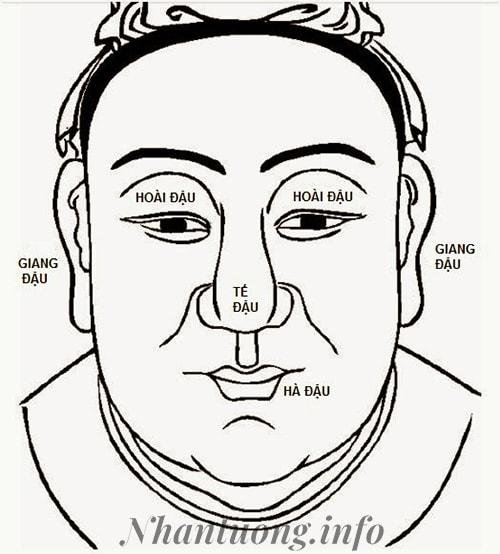 Khuôn mặt được chia theo Tứ Đậu