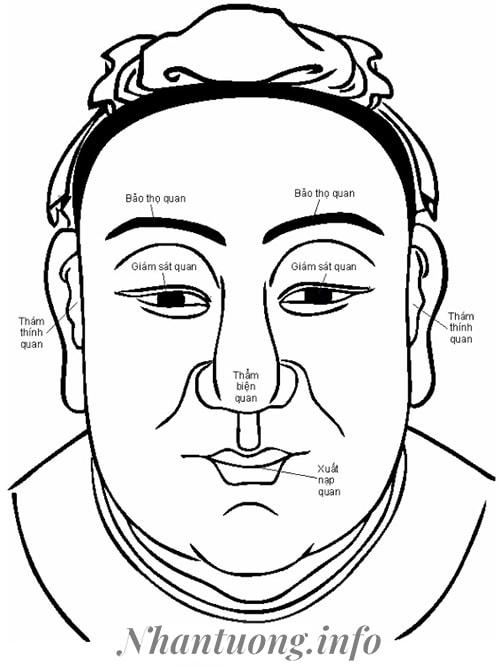Khuôn mặt được chia theo Ngũ Quan