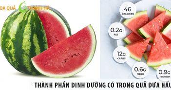 Những thành phần dinh dưỡng có trong quả dưa hấu