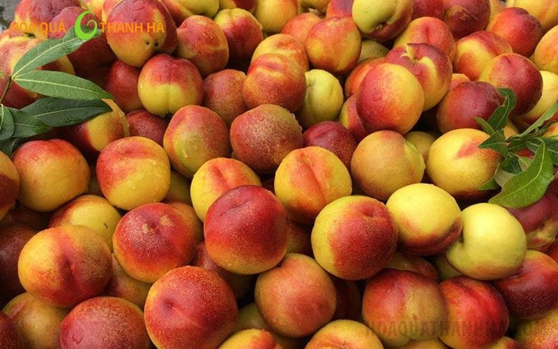 Đào là một trong những loại quả chứa nhiều thành phần dinh dưỡng