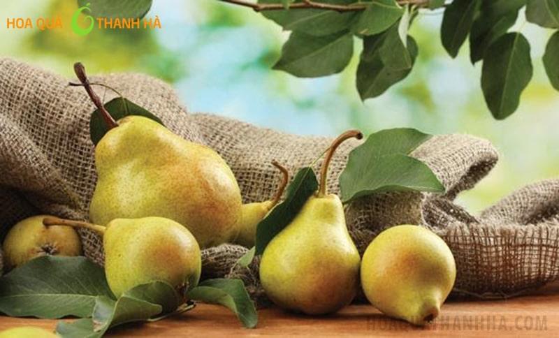 Lê là loại quả chứa nhiều dưỡng chất quan trọng